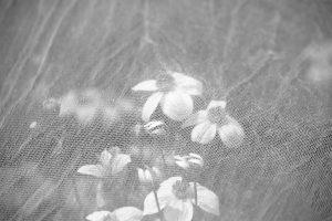 werk 2018 augustus, bloemen onder net