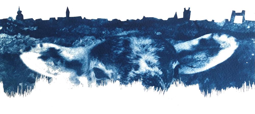 logo-dordtse-schapenkop